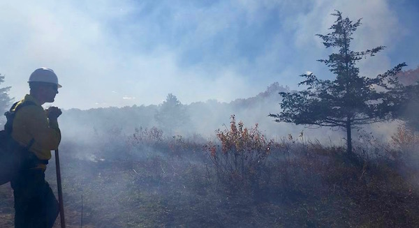 Conducting a prescribed burn at the New York Wildfire & Incident Management Academy in the fall of 2015.