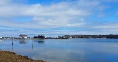Dering Harbor, Wednesday afternoon.