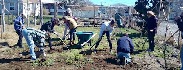 The Montauk Community Garden crew at work.
