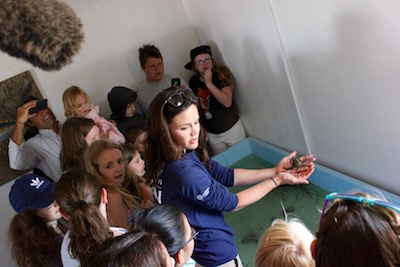 Marine Program Educator Rachel Neville gave a tour of CCE's touch tank.