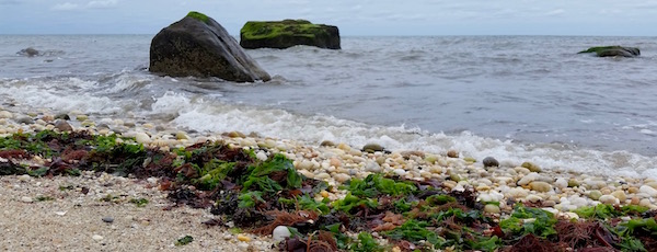 Tuesday morning, Long Island Sound