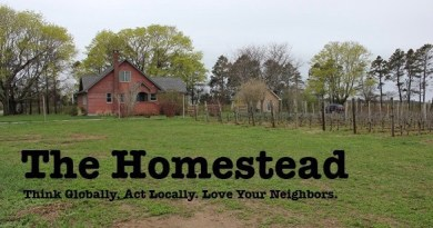 The Homestead: The Stain