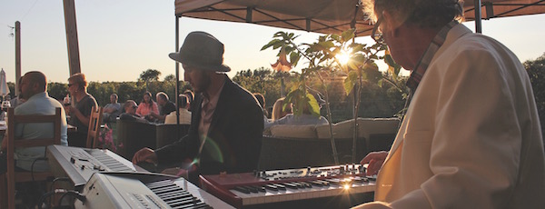 Playing original music in the vineyards.