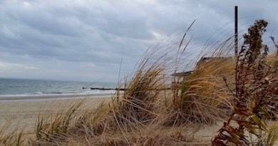 Tuesday afternoon, New Suffolk Beach