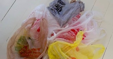 Be prepared to pay 5 cents for grocery bags in the new year.