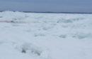 West Landing, Hampton Bays, Monday afternoon.