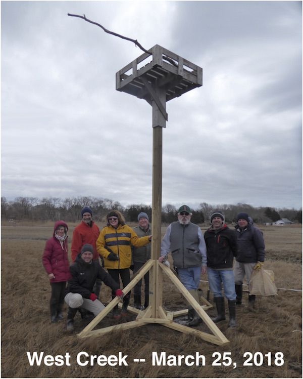 The crew gathered March 25 to replace the osprey pole