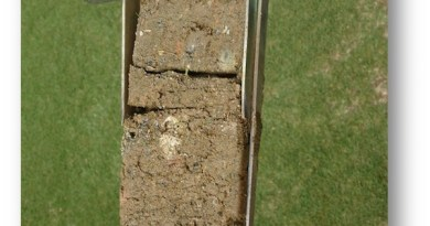 "A sample of poor soil from a golf course. Possibly a ""clean fill"" material, this soil features many large particles and scant organic matter."