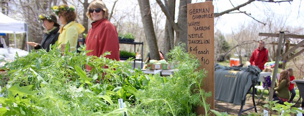 At Sunday's Dandelion Festival at KK's The Farm. Stay tuned here later this morning for more photos from the event.