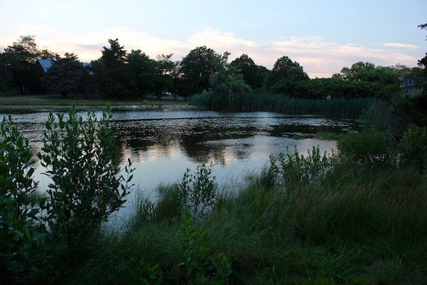 Pussy's Pond, between the school and the harbor, recently underwent a major restoration effort