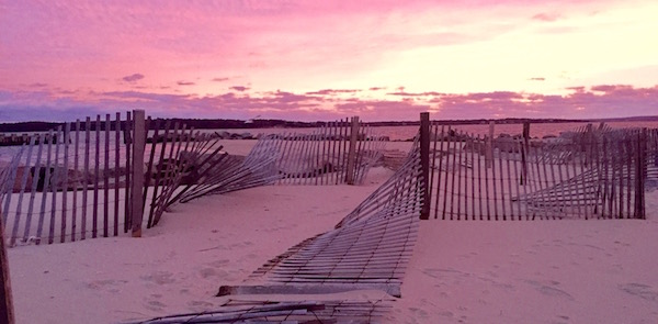 Sunrise Snow Fence