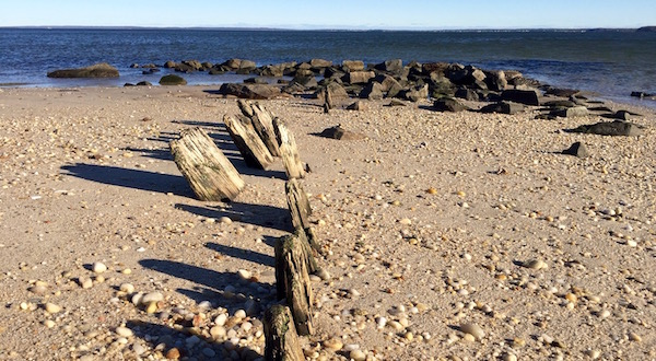 At South Jamesport Beach