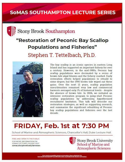 """SoMAS Lecture: """"Restoration of Peconic Bay Scallop Populations and Fisheries"""" at Stony Brook Southampton"""