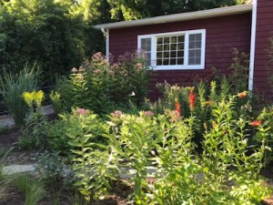 The native plant garden at The Red House at Inlet Pond County Park