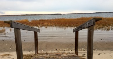Strange Horizon, Flanders Bay