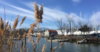 In Schoolhouse Creek, New Suffolk