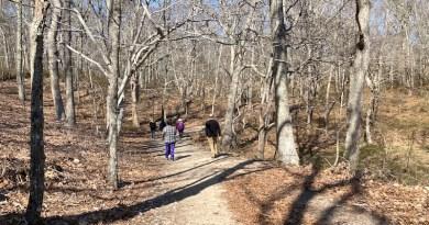 Into the Woods, Mashomack