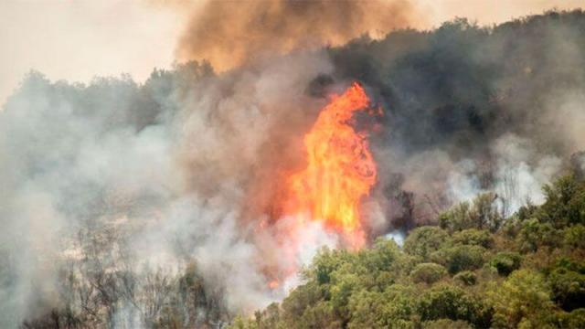 Environment, fire, Argentina, Wildfire, Calilegua National Park, Yungas,