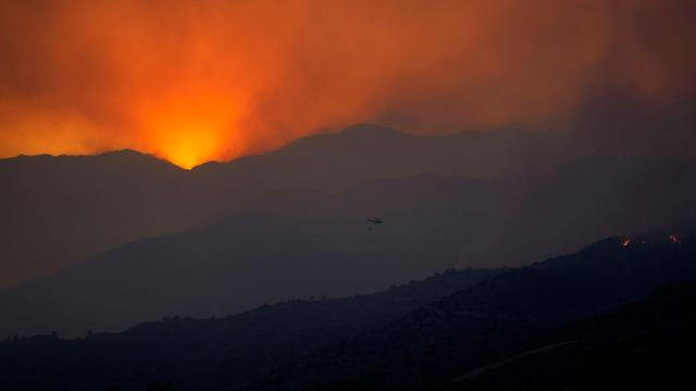 Cyprus asks for help from Israel, EU to put out forest fires