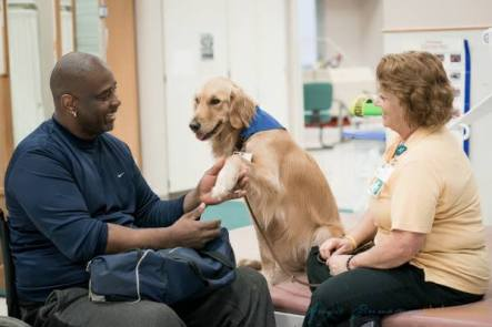 Patient with dog for rehabilitation