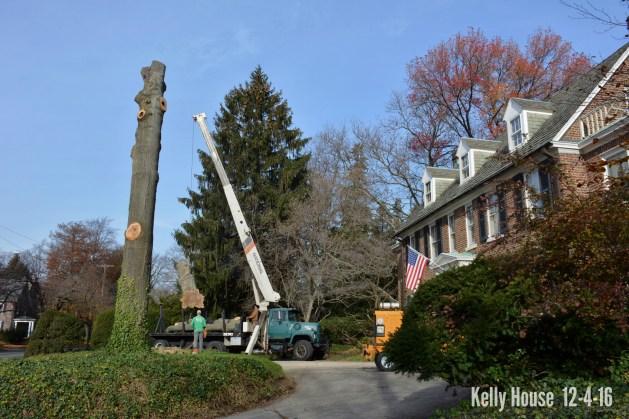 eastfallslocal-12-5-grace-kelly-house-bye-trees-drama-txt