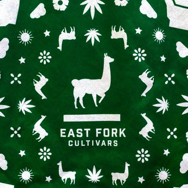East Fork Cultivars Forest Green Bandana