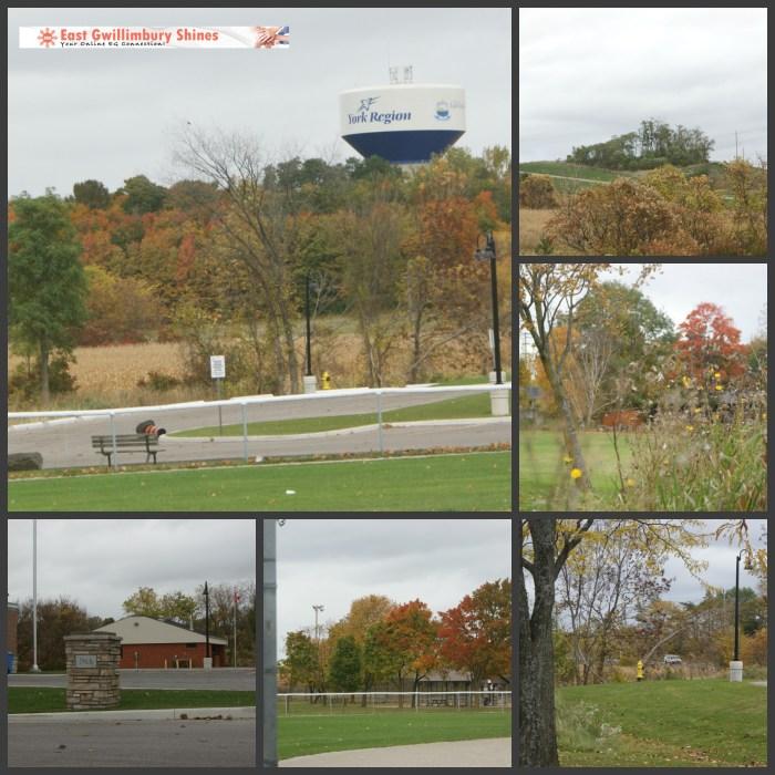 One Fall Day York Region 2