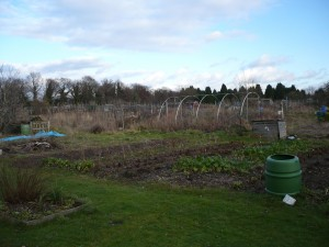 woodside road allotments eastleigh