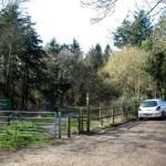 stoke.park .woods .bishopstoke.jpg.w560h420