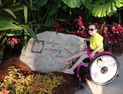 Discovery Cove, Florida
