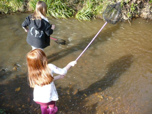 Youngsters enjoy net dipping in Monks Brook