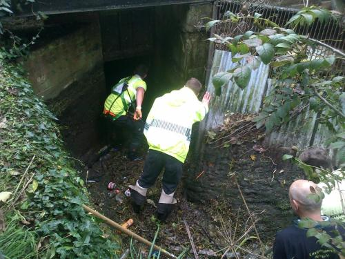 clearing Bishopstoke mill