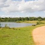 Beach Lake Lakeside Country Park Eastleigh