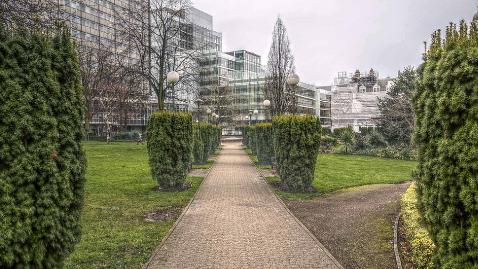 Queen's Gardens Pic: David Pinkney