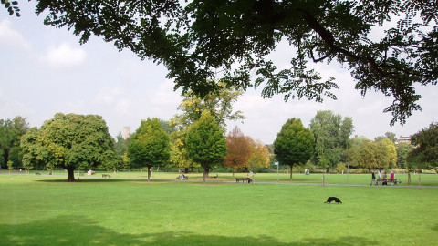 At weekends, Clissold Park is packed with active families Pic: Ewan Munro