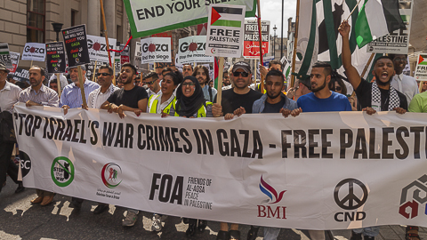 Gaza Protest July 25 Pic:Niall Sargent