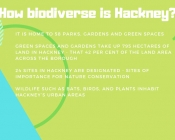 How biodiverse is Hackney