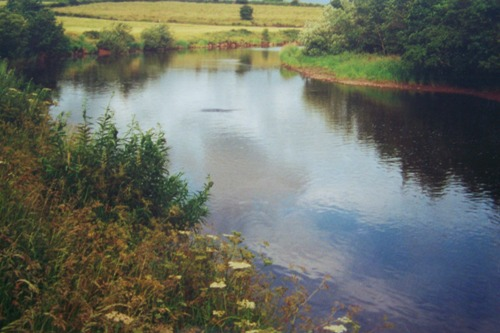 East Mayo Anglers' Association Club & Fishery in Co Mayo Ireland