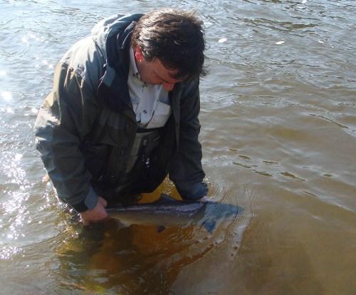 East Mayo Anglers' Association Fishery in Co Mayo Ireland