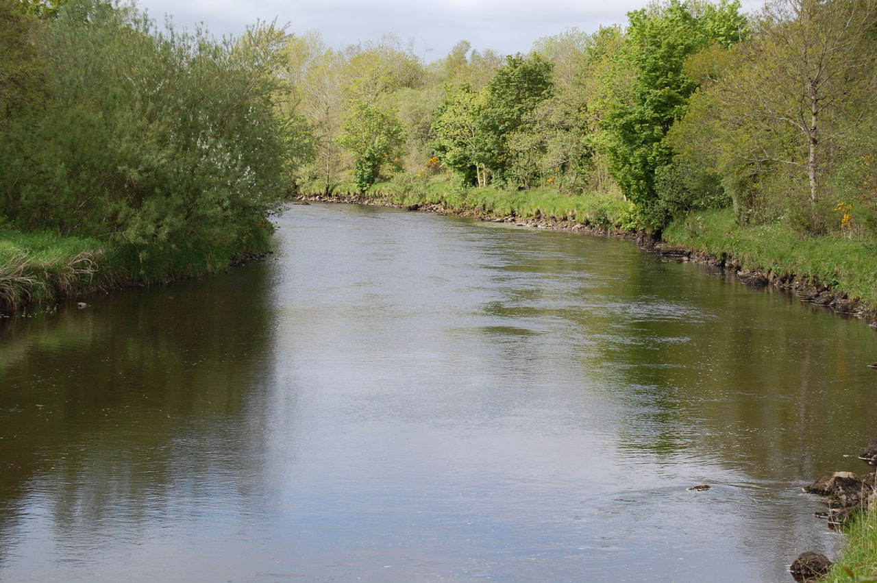 East-Mayo-Anglers-Association-The-finest-salmon-fishery-in-Ireland