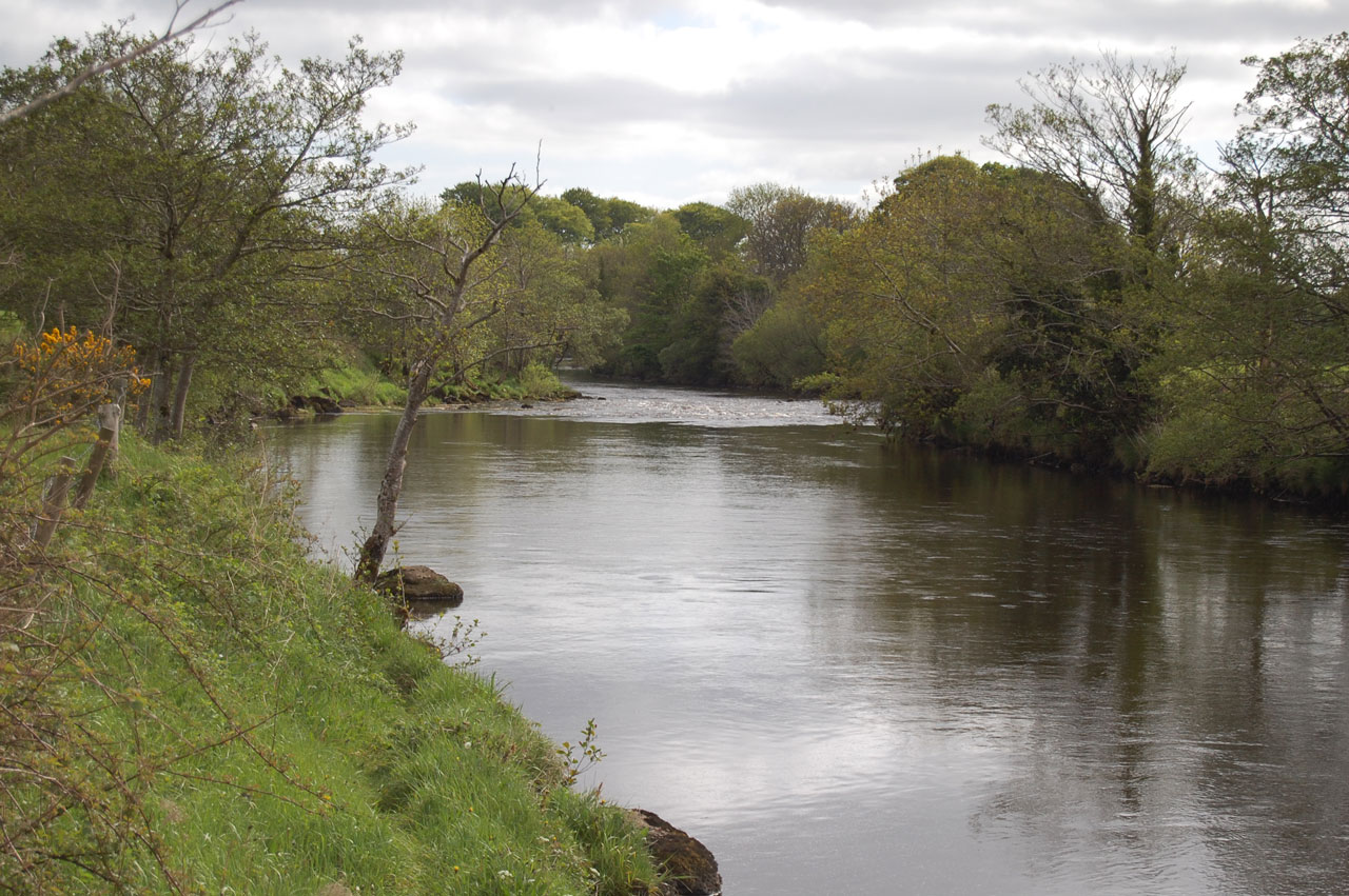 East Mayo Anglers' Association fishery is excellent for Salmon Fishing and is based on the River Moy