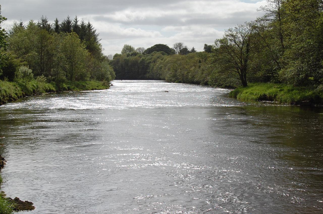 East-Mayo-Anglers-Salmon-Fishery-in-Co-Mayo