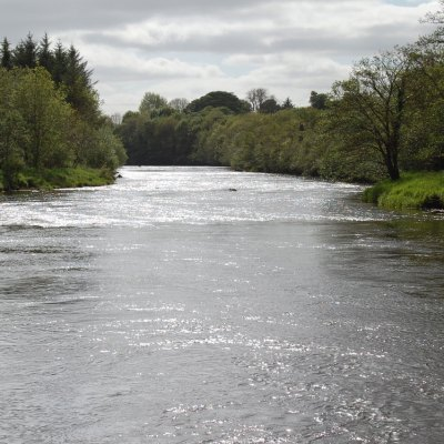 East-Mayo-Anglers-Salmon-Fishery-in-Co-Mayo