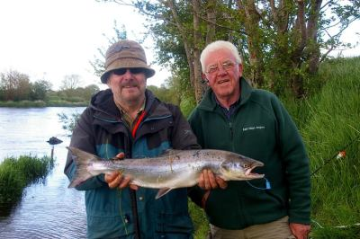 Bernie Clarke Foxford, 8lb Springer caught at Ballylahan Bridge using the Spinner on 31st May 15