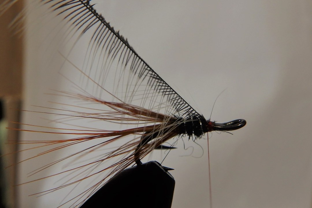 Shrimp flies 10