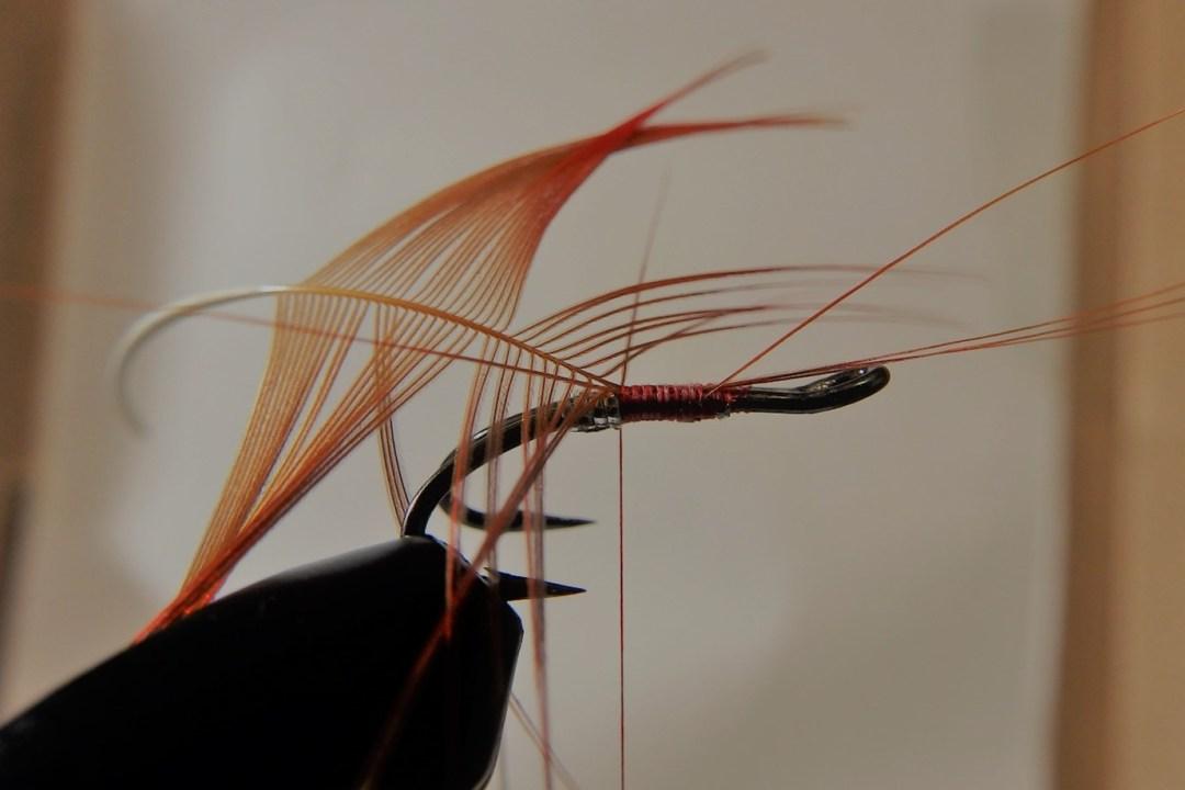 Shrimp flies 3
