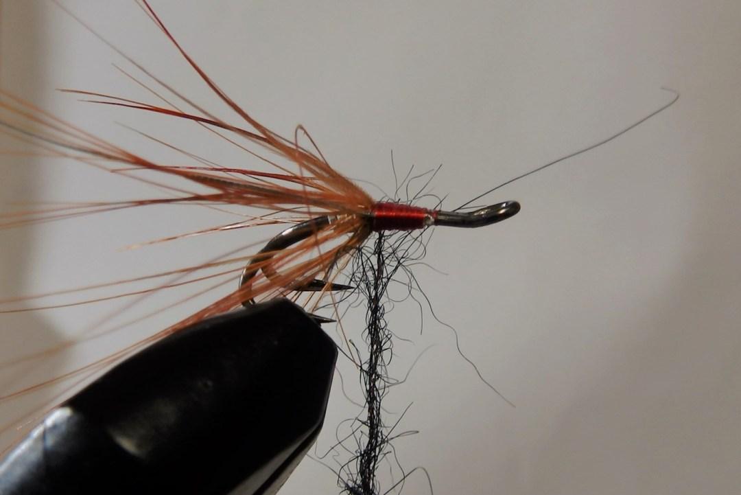 Shrimp flies 8