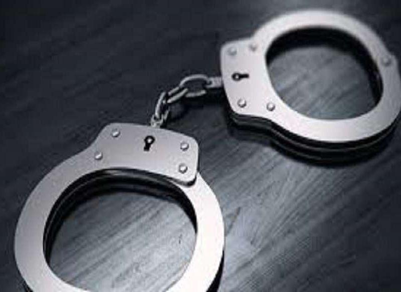 2 arrested with illegal teak wood in Kaziranga