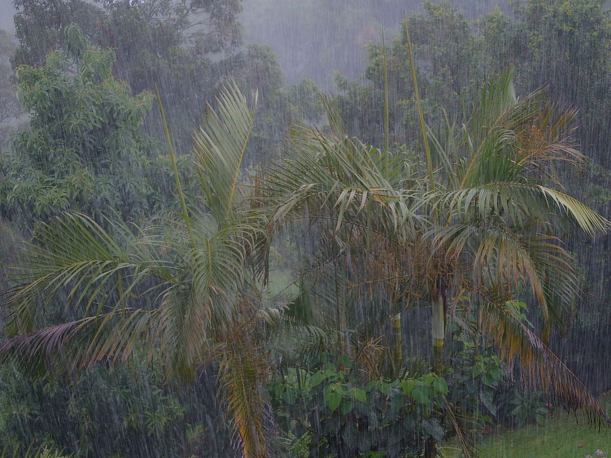 Thunderstorms, inclement weather predicted for Northeast India