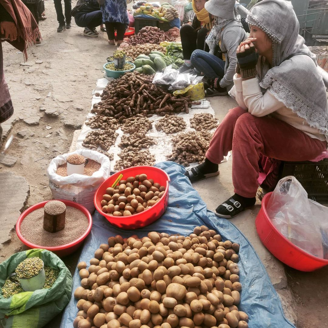 Bus service for street vendors launched in Nagaland